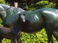 horse-foal-botanical