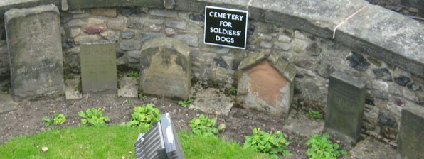 website-dog-cemetery-edinburgh