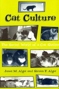 cover cat culture