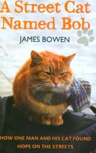 cover street cat bob