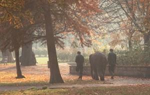 regents park elehant