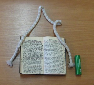 diary holman