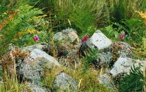 Badbea stones